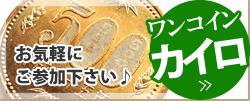 ワンコインカイロ